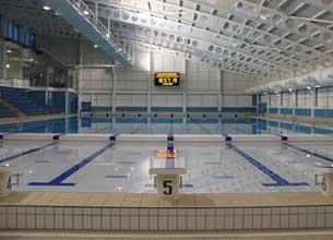 The British Octopush Association Leeds New Pool